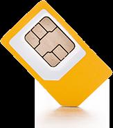 Datenübertragung mit Wolf-SIM-Karte